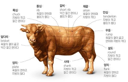 Секир башка быка.