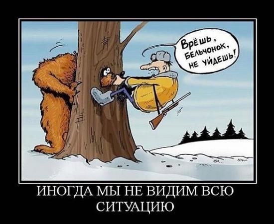 """Актуальное вью рынка: """"Не рановато ли охотиться на медведей?"""""""