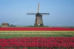 Превью на сегодня: размещения Голландии и Испании, долговые страхи, Apple и коррекция