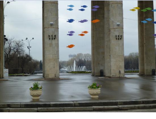 Москва - мфц)))).( 2)