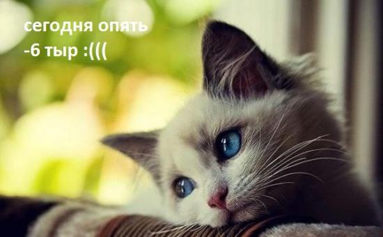 """""""Опять минус 6 тыр""""... Мотивационное."""