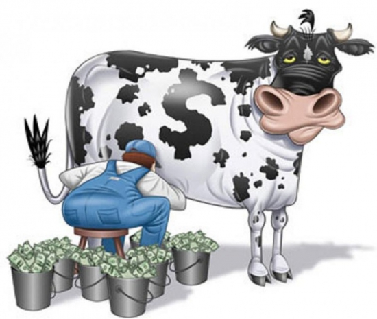 Это наша корова и мы ее доим!