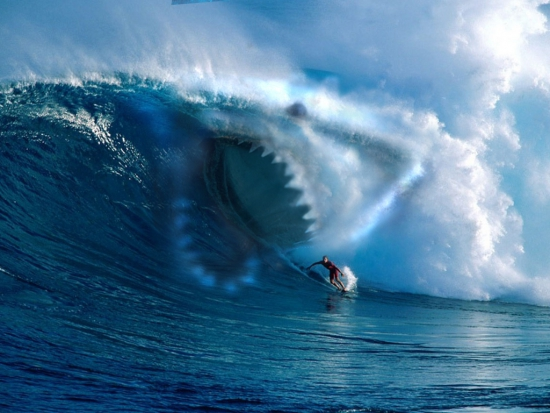 Stop-акула
