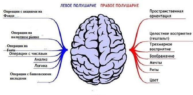 в пожилом возрасте от головной боли