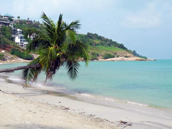 Мой торговый день на тропическом острове.