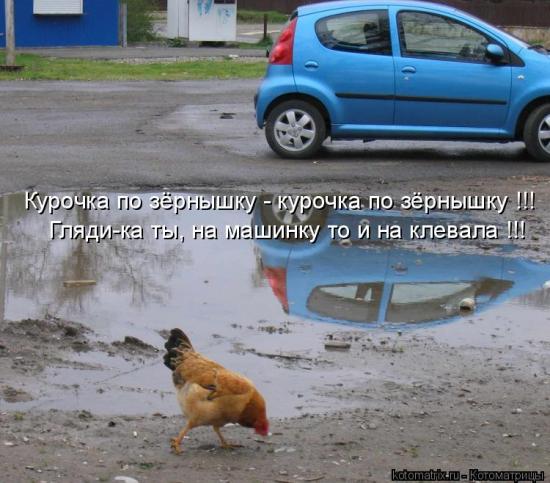 Записки Ишимотчика-Вульфовича №76