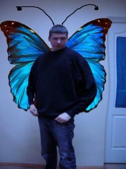 Трейдер Бабочка