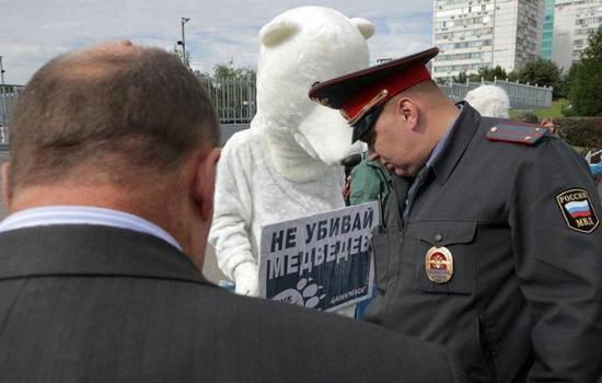 Несколько слов о Газпроме или почему я жду 194