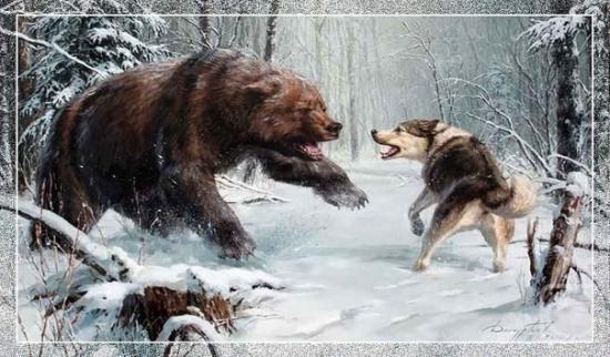 Медведи капитулирен