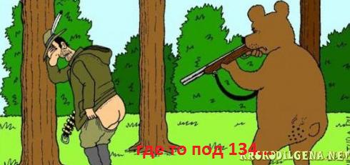 МИШКИ! - держитесь! (в РИ). -2