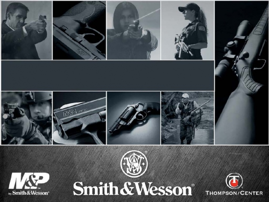 Chart Of The Day: Smith & Wesson Sales