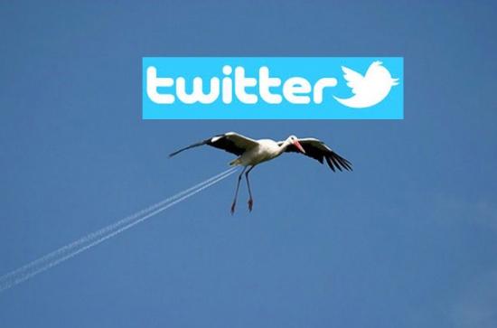 Твиттер взлетел и упал