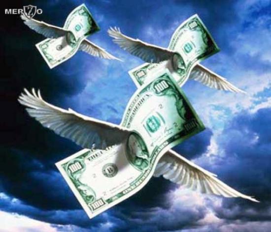 Трендовый рынок - стая птиц (аналогия)