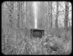 Подписки на платное ТВ падают до катастрофического уровня