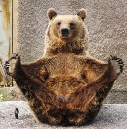Стратеги с Уолл-стрит о медвежьих трендах