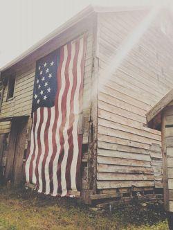 Пол Крейг Робертс: «Американская экономика — карточный домик»