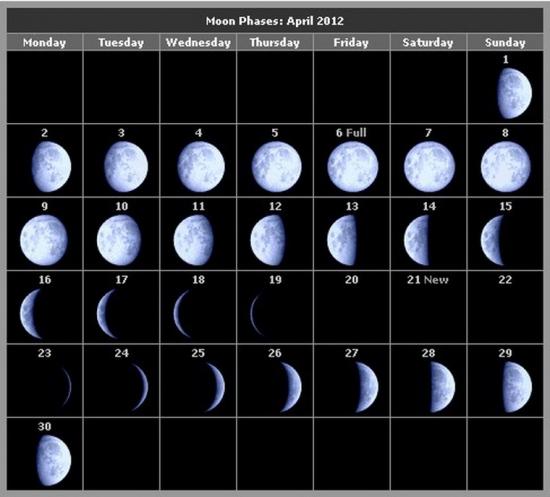 причины сбоя на бирже - новый лунный цикл