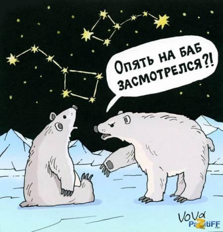 Что то медведи у нас последнее время не о том думают...)