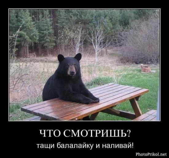 Медведь всё-таки не хорёк)