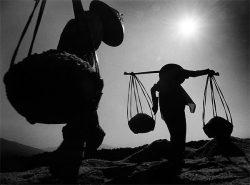 США и налоговые ставки: глобальный взгляд на вещи