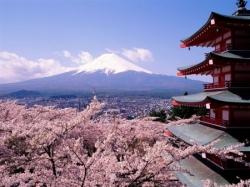 Почему японские государственные облигации называют «оставляющие вдов»?