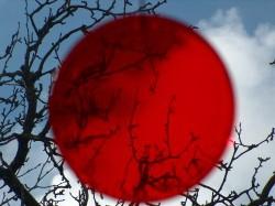 Кейс от Уолл-Стрит: Джеффри Гундлах все еще «шортит» йену