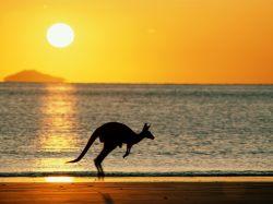 У Австралии проблемы