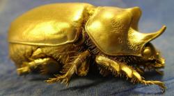 Марк Фабер: «Золото упало из-за СМИ»