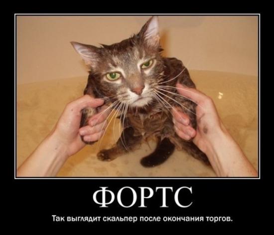Скальпер на ФОРТС