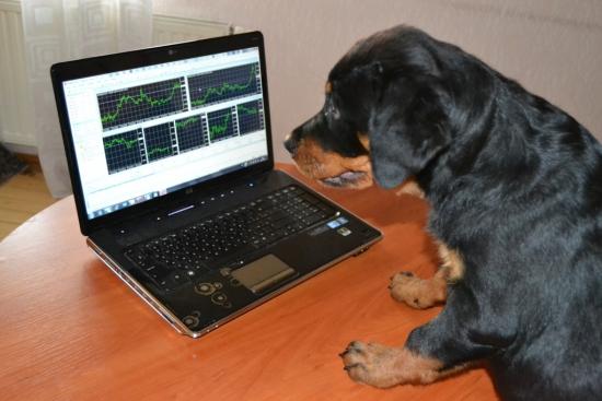 Как и обещал ранее, http://smart-lab.ru/blog/offtop/65898.php, началась учеба).