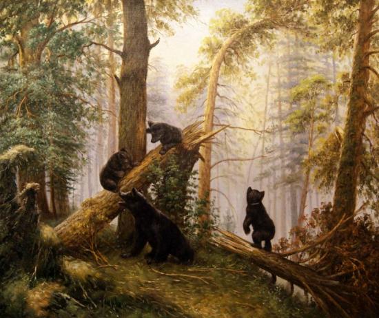 На «медвежьей» территории