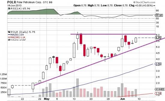 SEC остановила торги по акции, которую я купил!  Явление чёрного лебедя.