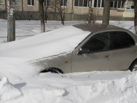 В Киев пришла весна... замело :)