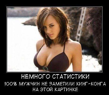 http://smart-lab.ru/uploads/images/01/24/78/2013/04/30/878119.jpg