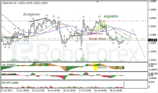 RoboForex: анализ индикаторов Б. Вильямса для USD/CAD и NZD/USD на 19.07.2013