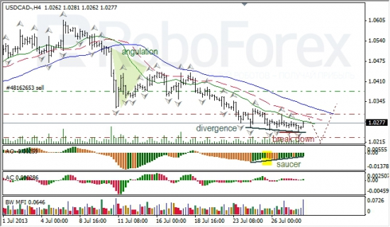 RoboForex: анализ индикаторов Б. Вильямса для USD/CAD и NZD/USD на 30.07.2013