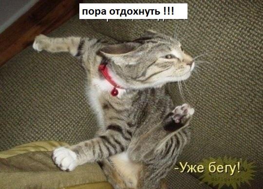 Соотношение риск/прибыль 1/20 ))) плечо 1/500 - называется со всей силы)))
