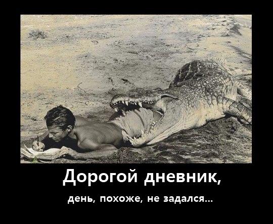 Глумной Дорогой Дневник =)))