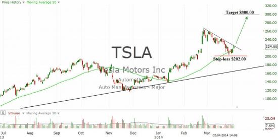 Tesla Motors, Inc. (TSLA)