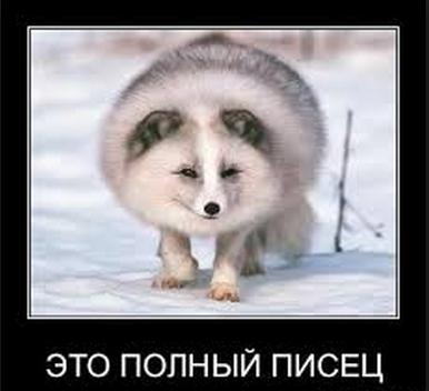 Бэнкинг по-русски: Дорогая редакция, я ...