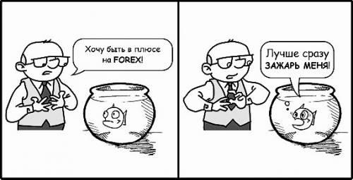 В плюсе на Forex?