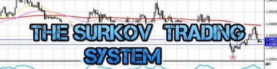 Торговая система Алексея Суркова