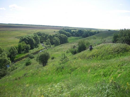 """Какие красоты Тульской области не показал Мартынов в своем посте. Там где стучит """" сердце Родины"""""""