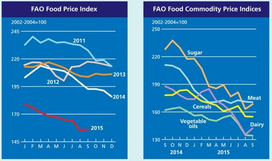 Второй полугодовой обзор цен FAO (пищевые рынки)