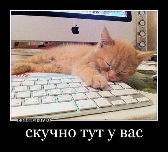 Скучный день. (Когда закончится Керри трейд в России? )