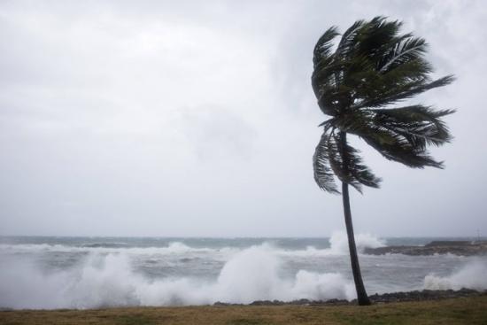 """Рост нефти на 15% за 2 дня объясняется тропическим штормом """"Эрика"""""""
