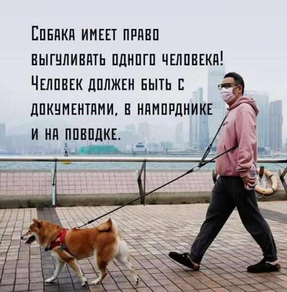 НОВЫЕ ограничения на передвижение по Москве