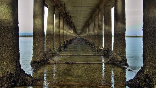 Медузы мутанты атакуют Керченский мост. К сожалению.