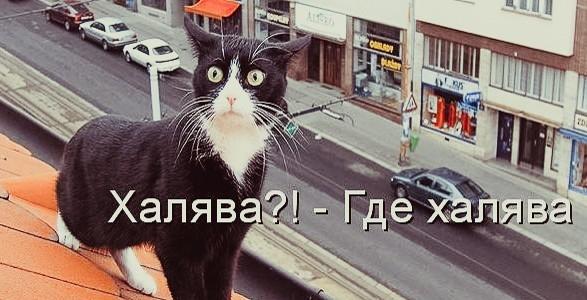 16 бесплатных деловых событий Москвы 17-23 сентября