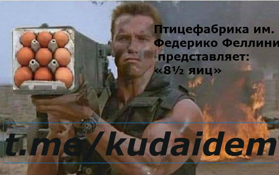 Хайп на яйцах.